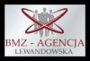 Współpraca dla Polskich Firm w Anglii