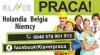 PRACA W BELGII- wymagane kwalifikacje