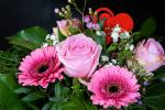 Akcja: praca przy kwiatach na 2-3 tygodnie