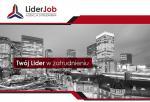 Praca w Holandii bez znajomości języka!